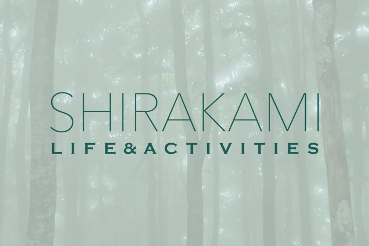 Shirakami sanchi hiking
