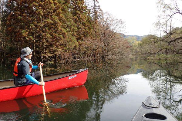 쓰가루시라카미호수(오카와)・카누 투어일