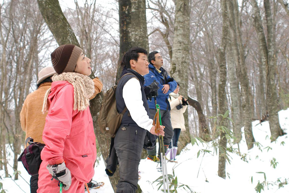 snow shoes and hike through the Juniko Forest in Tsugaru National Park