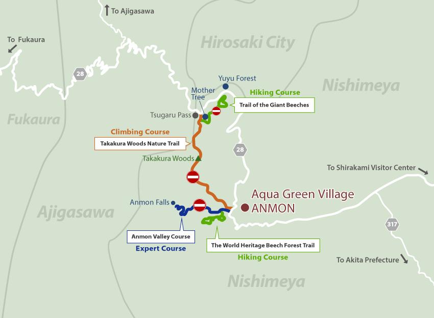 Nshimeya win Shirakami Sanchi